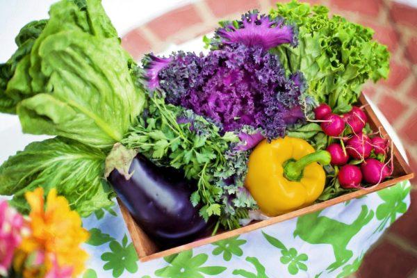 https://www.centromedicopiras.it/wp-content/uploads/2021/09/vegetables-790022_1920-600x400.jpg
